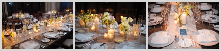 Chicago Wedding and Events Planner_0744